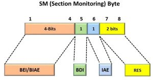 OTU Frame - Section Monitoring Byte Format - Optical Transport Networks