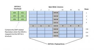 ODTU4.1 Frame Format