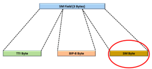 SM field with the SM Byte identified