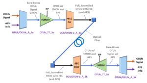 OTUk_TT_So to OTUk_TT_Sk unidirection connection