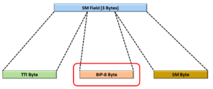 Location of BIP-8 Byte within Section Monitoring Field