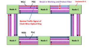 Defects in Both Working and Protection Transport Entity - Ring Protection Switching