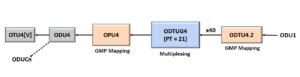 ODU1 to ODU4 - Using PT = 21 Method