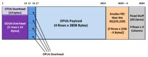 Functionally Compliant OTUkV Frame with Smaller FEC
