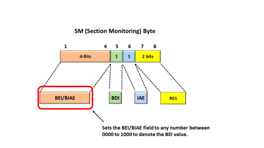 Section Monitoring Byte with the SM-BEI field Highlighted
